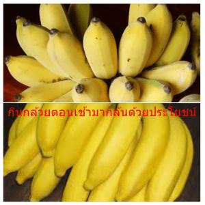 กินกล้วยตอนเช้ามากล้นด้วยประโยชน์