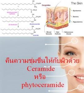 Ceramide หรือ phytoceramide