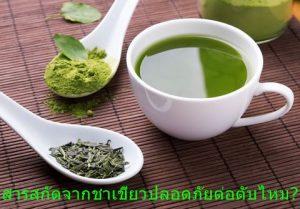 สารสกัดจากชาเขียวปลอดภัยต่อตับไหม