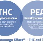 Enturage effects ในระบบเอ็นโดแคนนาบินอยด์