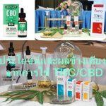 ประโยชน์และผลข้างเคียงจากการใช้ THC/CBD