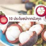 10 ประโยชน์จาก มังคุด – ราชินีแห่งผลไม้เมืองร้อน บำรุงผิวพรรณ ป้องกันโรค