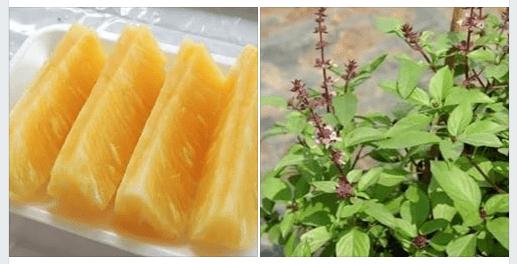 น้ำสับปะรด+โหระพา รักษาผู้ที่เกล็ดเลือดต่ำ เลือดจาง