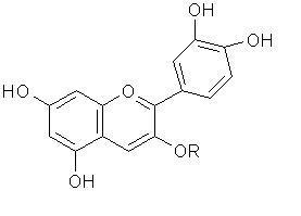 โมเลกุลของแอนโทไซยานิน