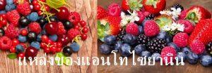 สารแอนโทไซยานิน เป็นรงควัตถุหรือสาร ที่ให้สีแดง ม่วง และน้ำเงิน พบในดอกไม้ ผลไม้ที่ให้สีม่วง