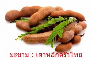 มะขาม : เสาหลักครัวไทย