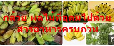 กล้วย ผลไม้ที่อุดมไปด้วยสารอาหารครบถ้วน