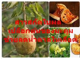 สารสกัดใบผลเปลือกต้นของมะตูมช่วยลดน้ำตาลในเลือด