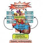 ผู้ป่วยโรคเบาหวาน ทำไมต้องใช้น้ำมันกัญชงมากกว่าน้ำมันกัญชา