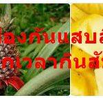 วิธีป้องกันแสบลิ้นแสบปากเวลากินสับปะรด