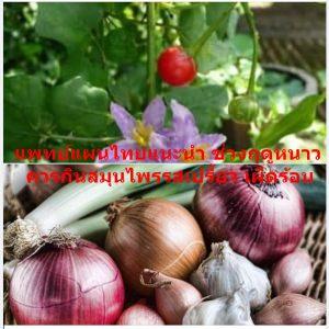 แพทย์แผนไทยแนะนำ ช่วงฤดูหนาว ควรกินสมุนไพรรสเปรี้ยว เผ็ดร้อน