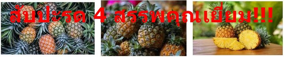 สับปะรด 4 สรรพคุณเยี่ยม!!!