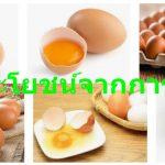 10 ประโยชน์จากการกินไข่