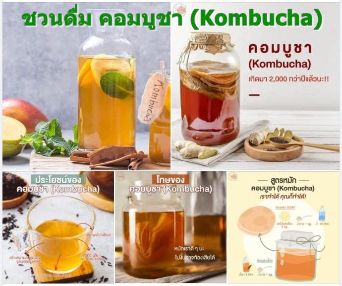ชวนดื่ม คอมบูชา (Kombucha)