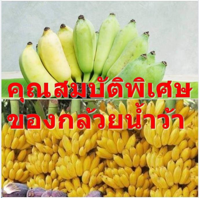 คุณสมบัติพิเศษของกล้วยน้ำว้า